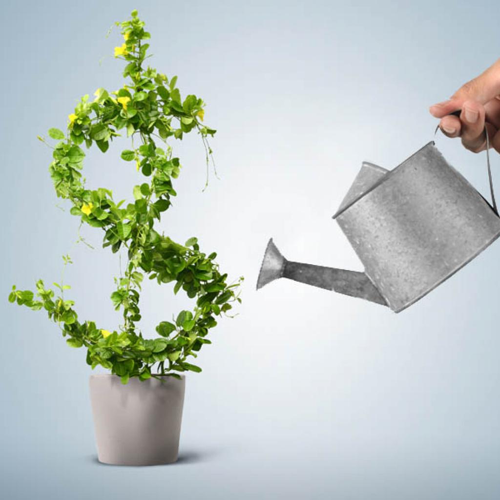 Pozyskiwanie źródeł finansowania oraz sprawozdawczość w PS